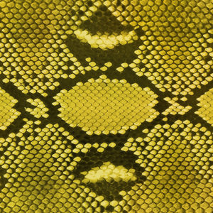 Diamond Python (Yellow)