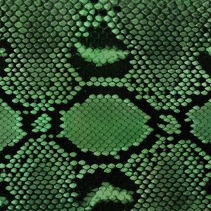 Diamond Python (Green)